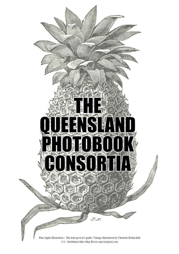 THE_QLD_PHOTOBOOK_CONSORTIA-Logo